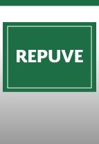 Registro Público Vehicular